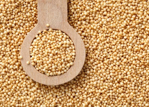 amaranth grain how to cook