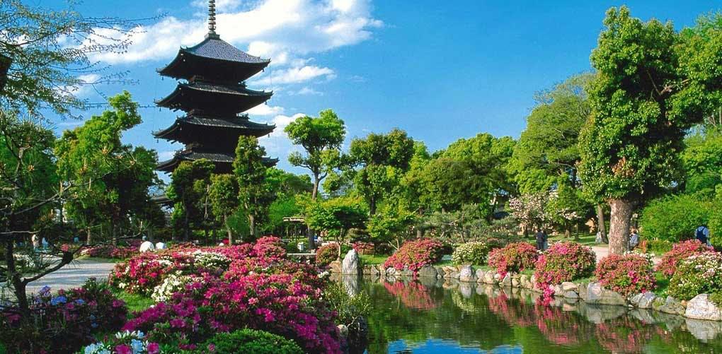 travel kyoto