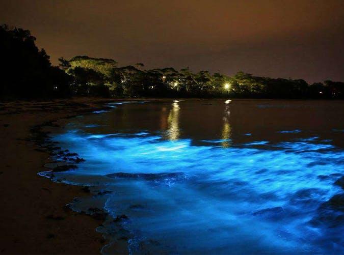 luminous lagoon