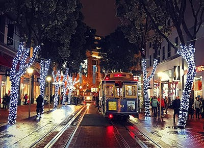 sf ultimate holiday guide CAT