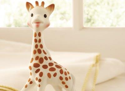 sophie giraffe msn