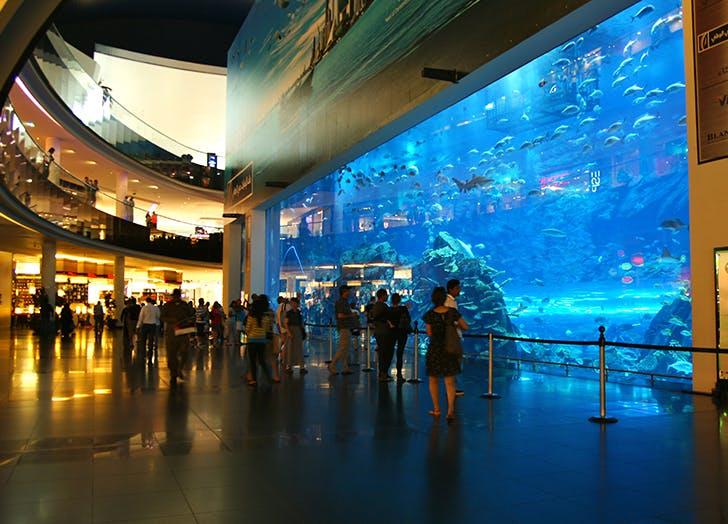 aquariam dubai