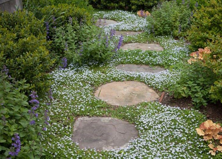 gardentrends3