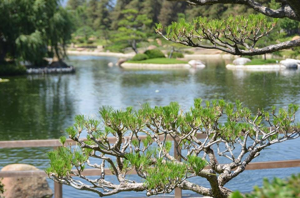 the japanese garden los angeles park